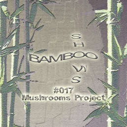 Bamboo Shows 017 - Mushrooms Project