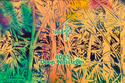 BS035 - Deep Nalström (Natural Selections) - 10.09.19