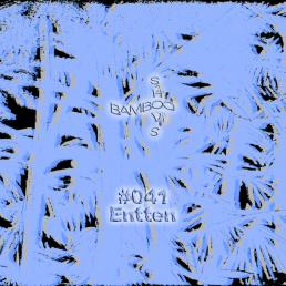 BS041 – Entten (Nits de la Tramuntana) – 29.01.20