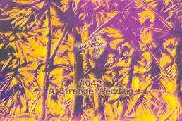 BS042 - A Strange Wedding (Worst Records) - 12.02.20