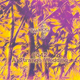 BS042 - A Strange Wedding (Worst Records) - 12.02.20