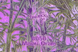 BS050 - Minou Oram