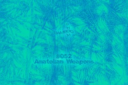 BS052 - Anatolian Weapons