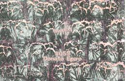 BS055 - Donato Epiro (Canti Magnetici)